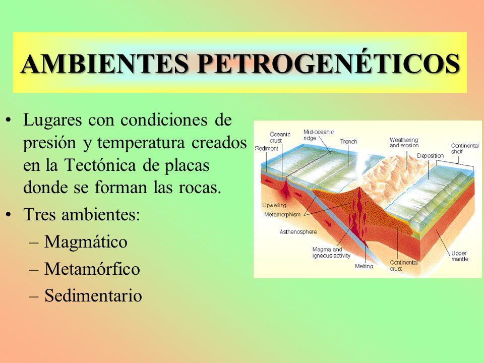 En este ambiente se producen los procesos magmáticos que dan lugar a las rocas magmáticas Ambiente Magmático Ambiente Magmático: determinado por la existencia de material fundido (magma) en el interior de la tierra.