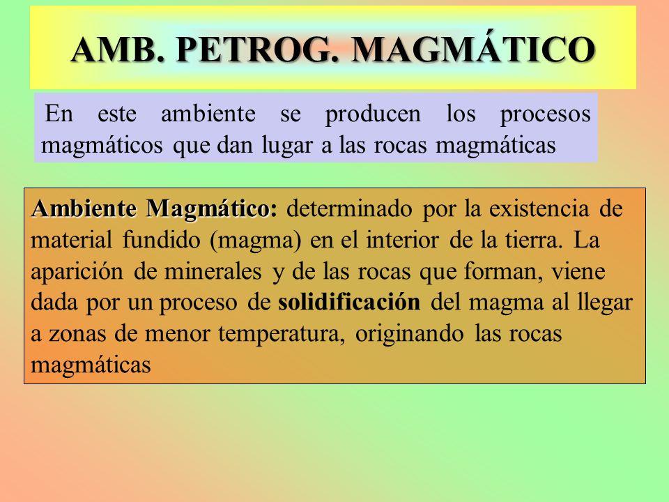 En este ambiente se producen los procesos magmáticos que dan lugar a las rocas magmáticas Ambiente Magmático Ambiente Magmático: determinado por la ex