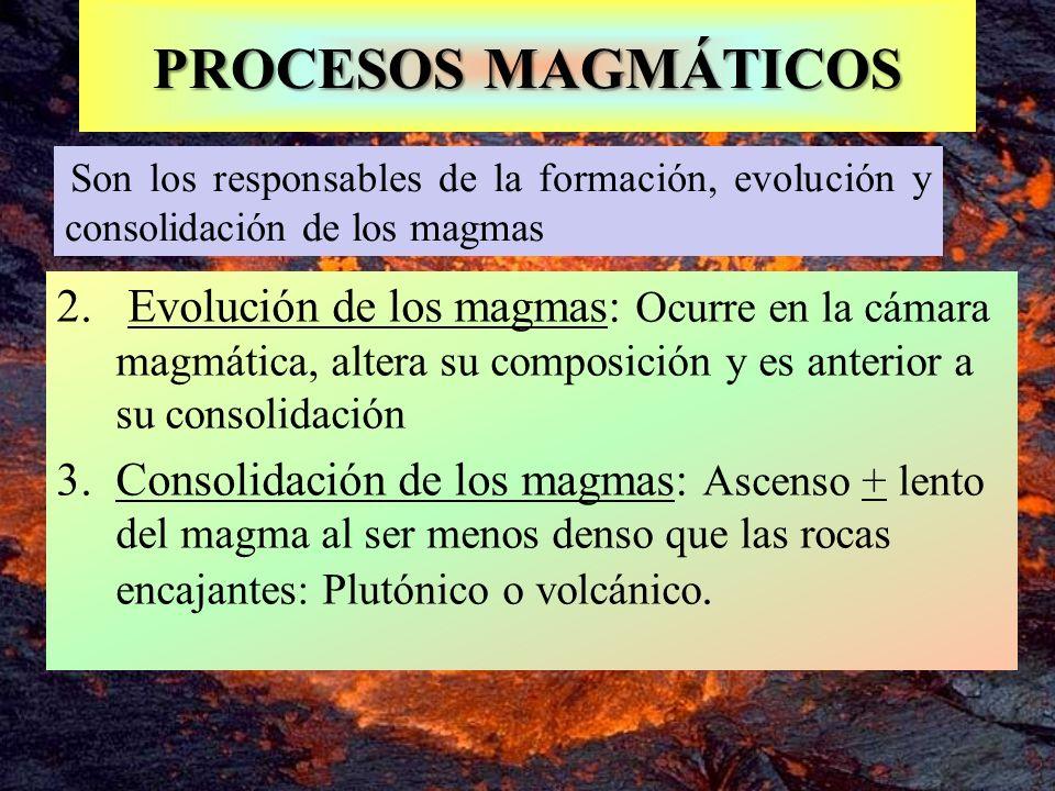 Son los responsables de la formación, evolución y consolidación de los magmas PROCESOS MAGMÁTICOS 2. Evolución de los magmas: Ocurre en la cámara magm
