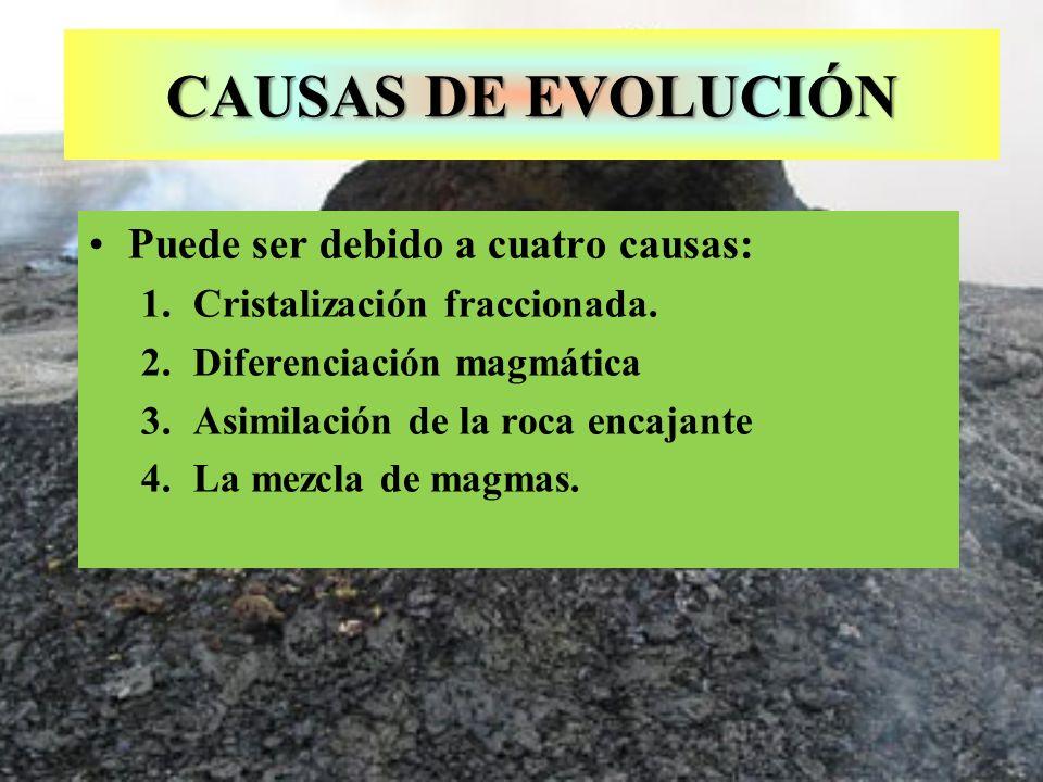 CAUSAS DE EVOLUCIÓN Puede ser debido a cuatro causas: 1.Cristalización fraccionada. 2.Diferenciación magmática 3.Asimilación de la roca encajante 4.La