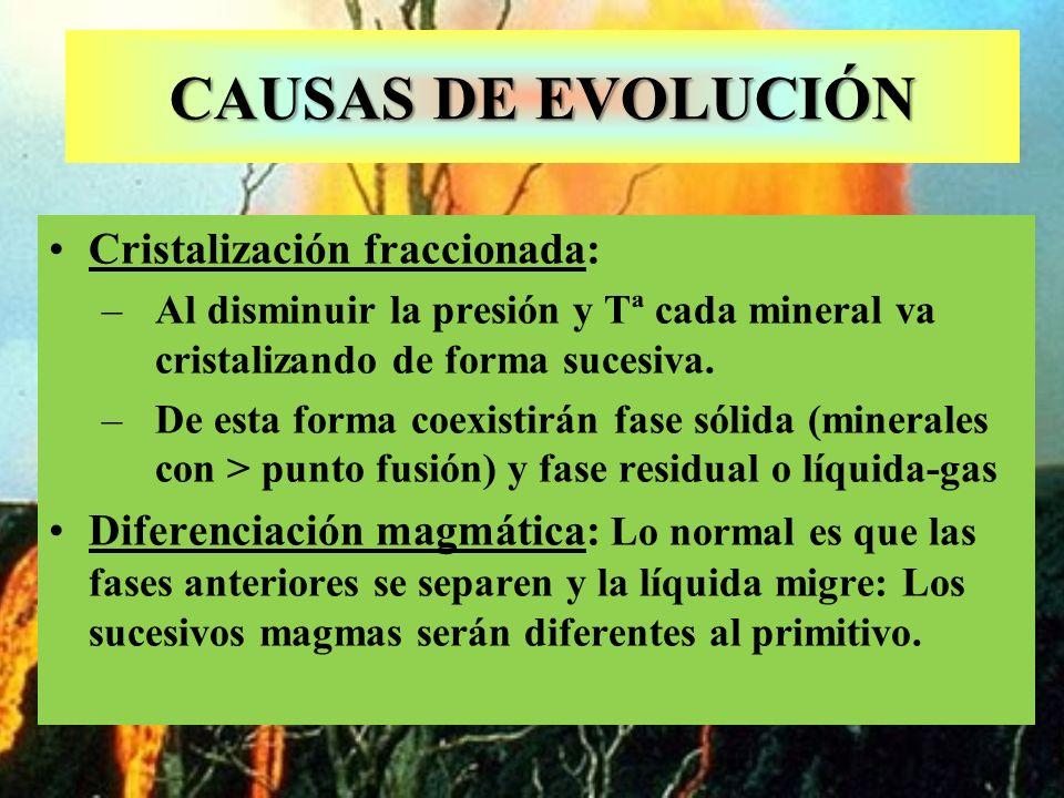 CAUSAS DE EVOLUCIÓN Cristalización fraccionada: –Al disminuir la presión y Tª cada mineral va cristalizando de forma sucesiva. –De esta forma coexisti