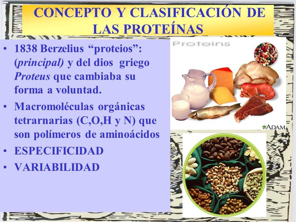 ESTUDIO DE LOS AMINOÁCIDOS Arginina al microscopio Compuesto orgánico de bajo Pm con función amino y función ácido.