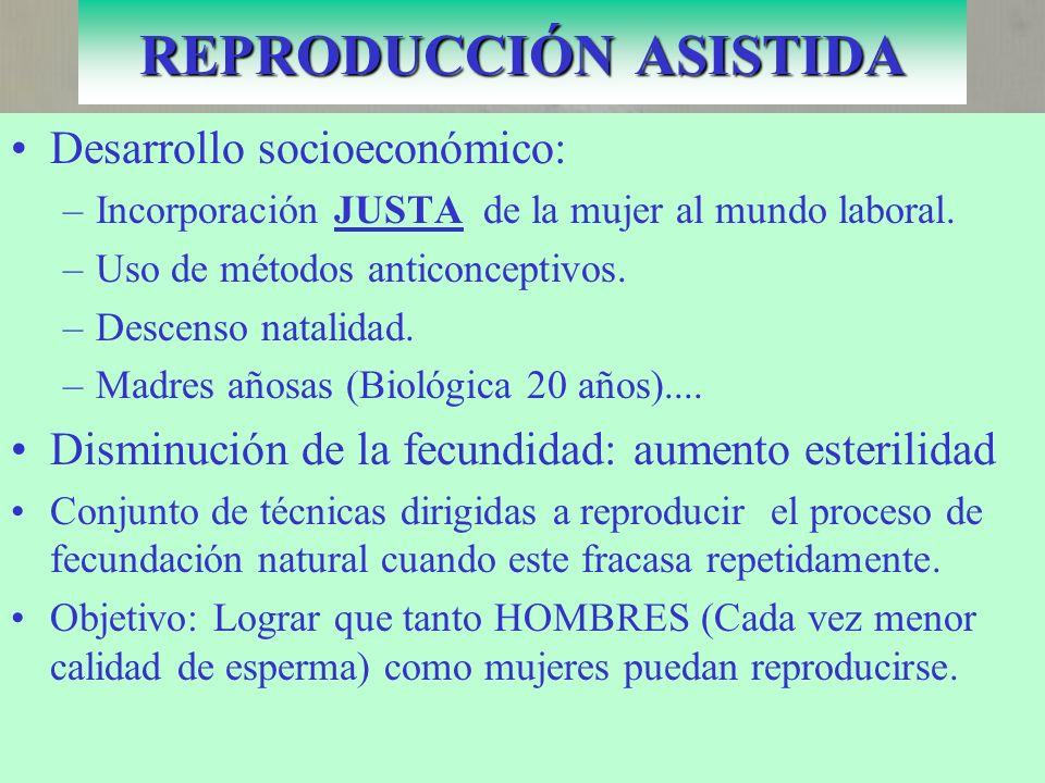Desarrollo socioeconómico: –Incorporación JUSTA de la mujer al mundo laboral.