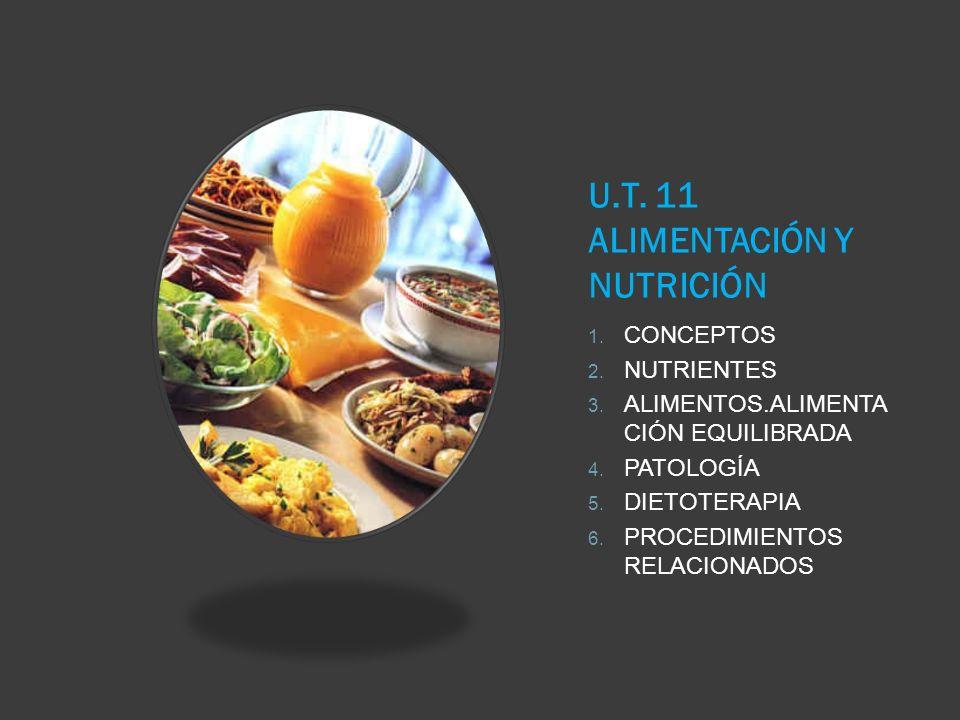 U.T. 11 ALIMENTACIÓN Y NUTRICIÓN 1. CONCEPTOS 2. NUTRIENTES 3. ALIMENTOS.ALIMENTA CIÓN EQUILIBRADA 4. PATOLOGÍA 5. DIETOTERAPIA 6. PROCEDIMIENTOS RELA