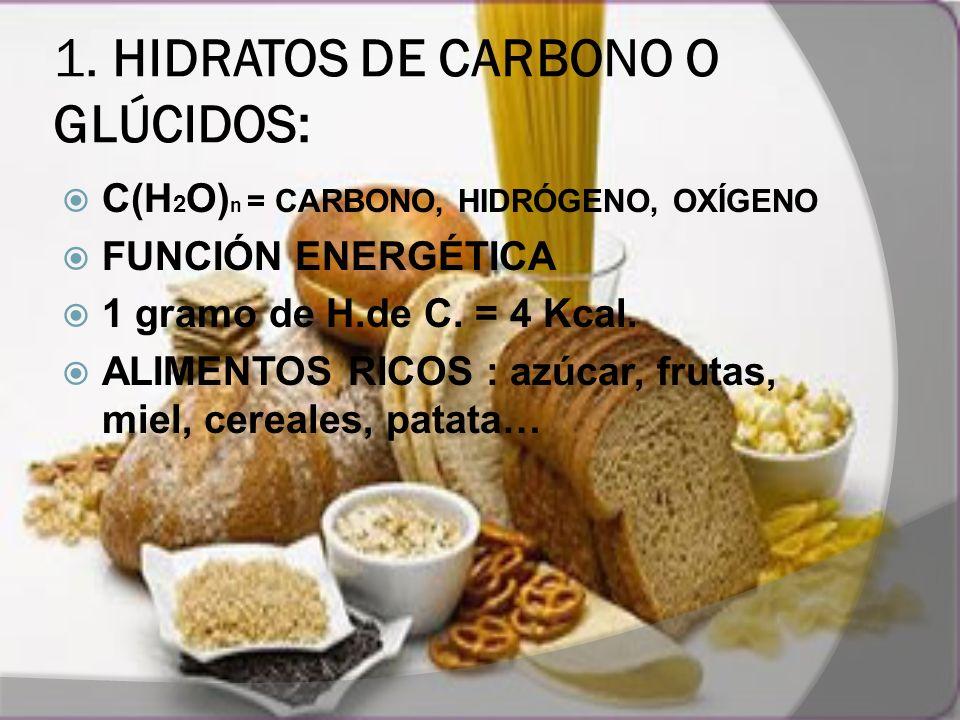 1. HIDRATOS DE CARBONO O GLÚCIDOS: C(H 2 O) n = CARBONO, HIDRÓGENO, OXÍGENO FUNCIÓN ENERGÉTICA 1 gramo de H.de C. = 4 Kcal. ALIMENTOS RICOS : azúcar,