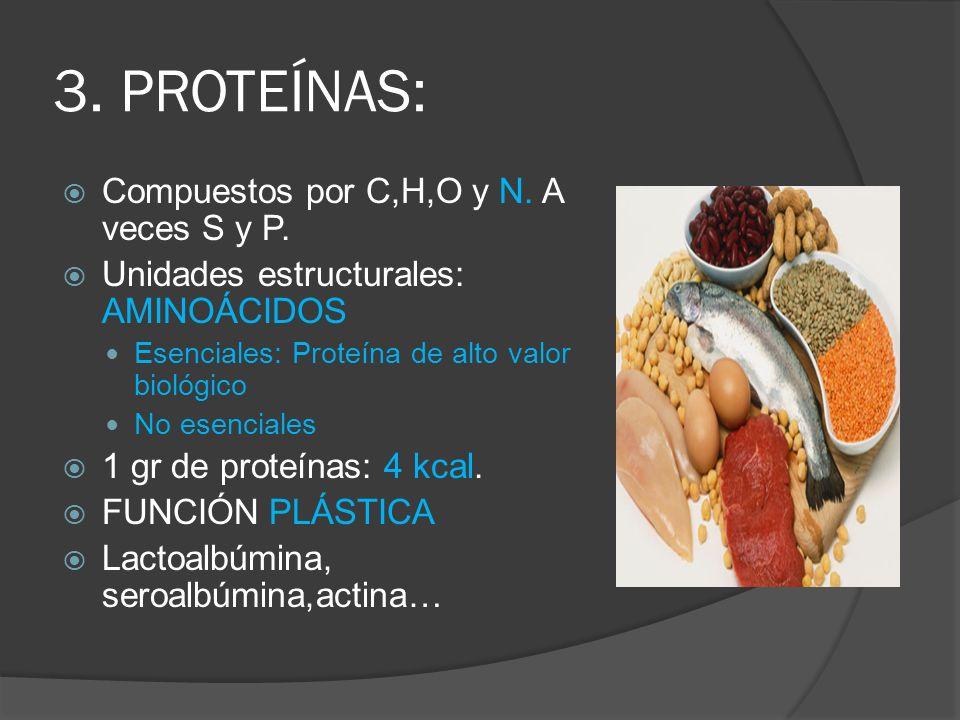 3. PROTEÍNAS: Compuestos por C,H,O y N. A veces S y P. Unidades estructurales: AMINOÁCIDOS Esenciales: Proteína de alto valor biológico No esenciales