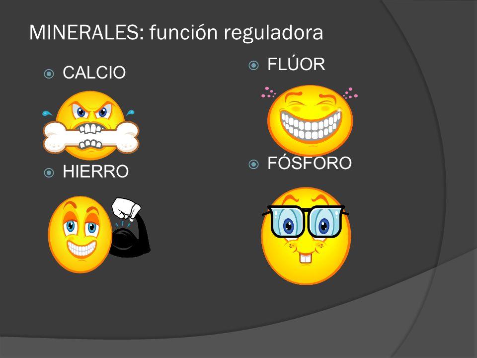 MINERALES: función reguladora CALCIO HIERRO FLÚOR FÓSFORO