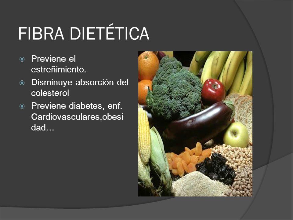 FIBRA DIETÉTICA Previene el estreñimiento. Disminuye absorción del colesterol Previene diabetes, enf. Cardiovasculares,obesi dad…