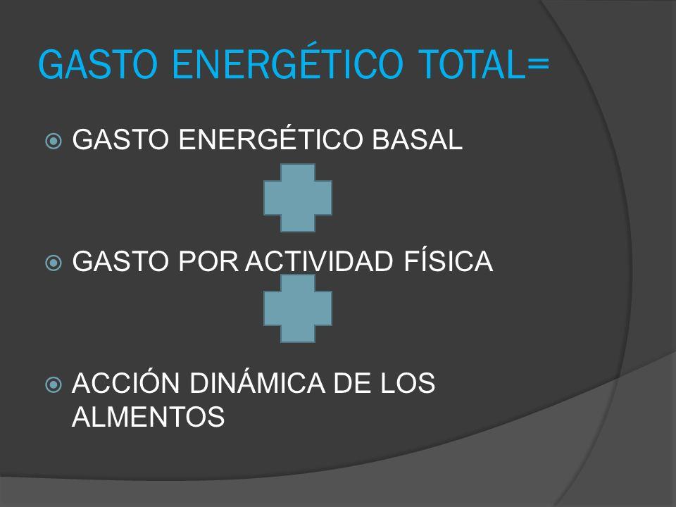 GASTO ENERGÉTICO TOTAL= GASTO ENERGÉTICO BASAL GASTO POR ACTIVIDAD FÍSICA ACCIÓN DINÁMICA DE LOS ALMENTOS