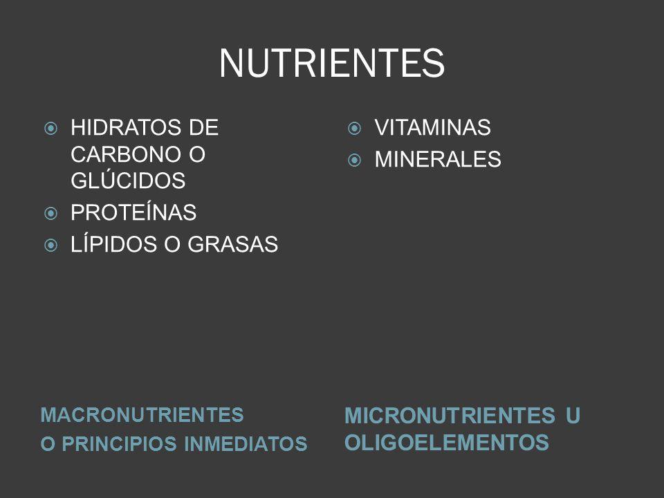 NUTRIENTES MACRONUTRIENTES O PRINCIPIOS INMEDIATOS MICRONUTRIENTES U OLIGOELEMENTOS HIDRATOS DE CARBONO O GLÚCIDOS PROTEÍNAS LÍPIDOS O GRASAS VITAMINA