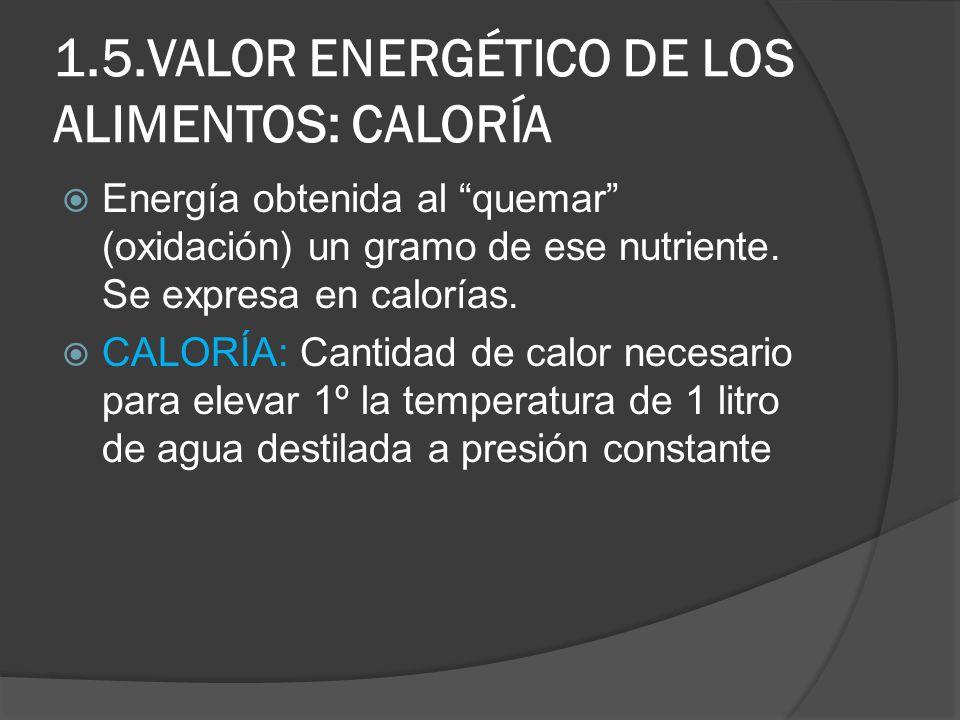 1.5.VALOR ENERGÉTICO DE LOS ALIMENTOS: CALORÍA Energía obtenida al quemar (oxidación) un gramo de ese nutriente. Se expresa en calorías. CALORÍA: Cant