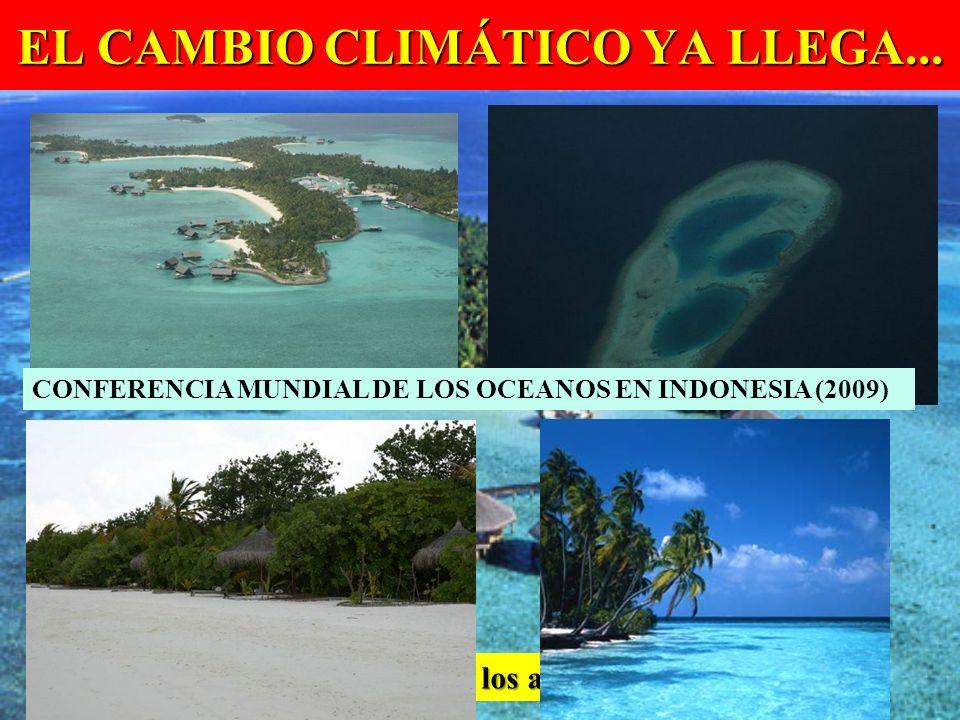 EL CAMBIO CLIMÁTICO YA LLEGA... Islas Maldivas en el Índico: los atolones se inundan CONFERENCIA MUNDIAL DE LOS OCEANOS EN INDONESIA (2009)