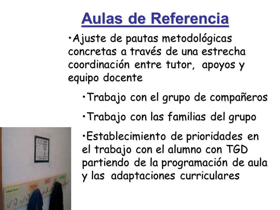 Aulas de Referencia Ajuste de pautas metodológicas concretas a través de una estrecha coordinación entre tutor, apoyos y equipo docenteAjuste de pauta
