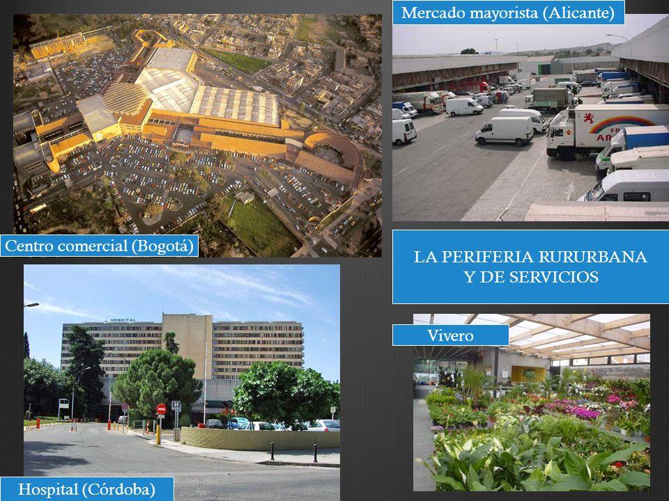 LA PERIFERIA RURURBANA Y DE SERVICIOS Centro comercial (Bogotá) Hospital (Córdoba) Mercado mayorista (Alicante) Vivero