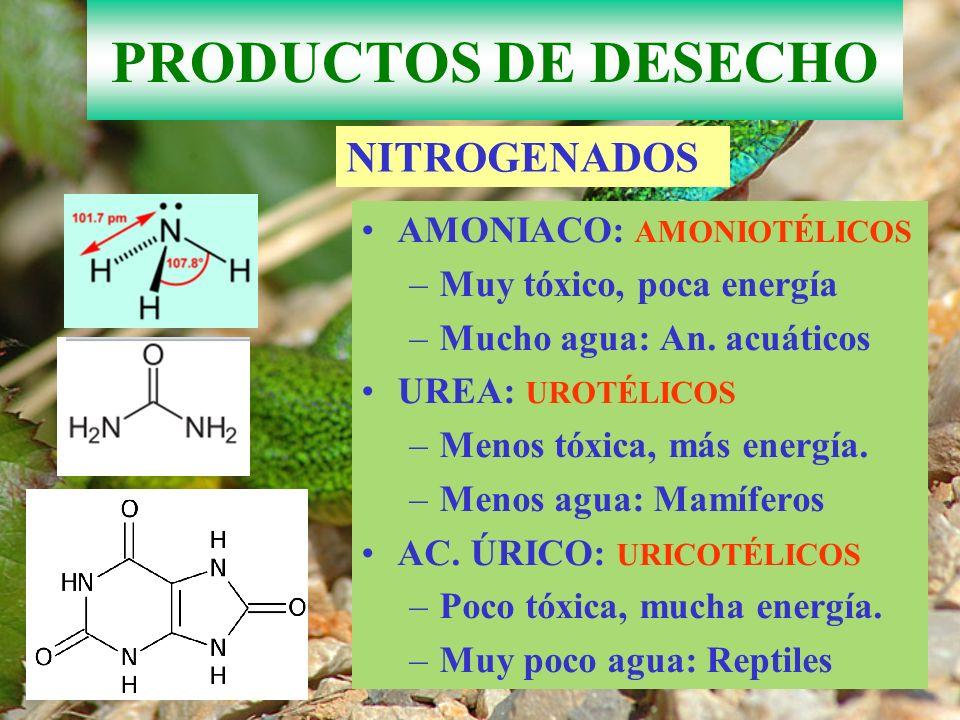 PRODUCTOS DE DESECHO Dióxido de carbono eliminado por respiración-ventilación.