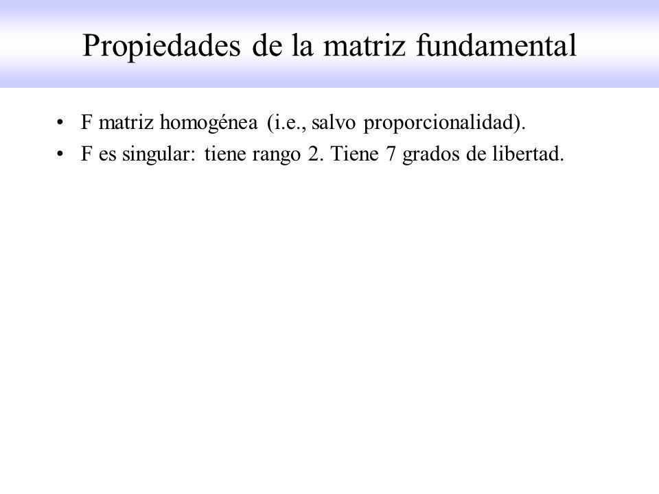 Propiedades de la matriz fundamental F matriz homogénea (i.e., salvo proporcionalidad). F es singular: tiene rango 2. Tiene 7 grados de libertad.