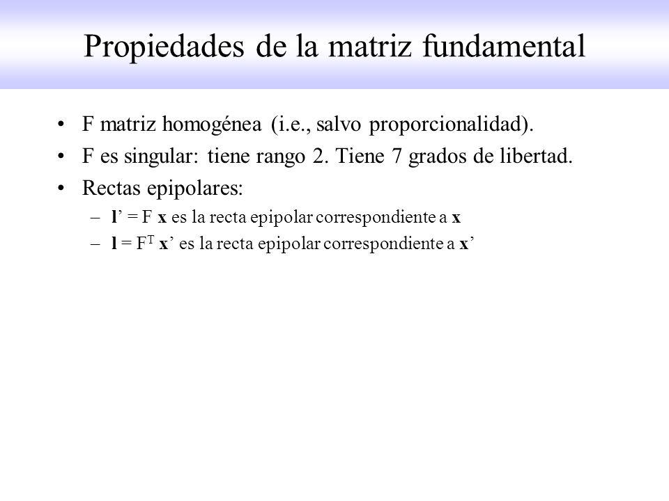 Propiedades de la matriz fundamental F matriz homogénea (i.e., salvo proporcionalidad). F es singular: tiene rango 2. Tiene 7 grados de libertad. Rect