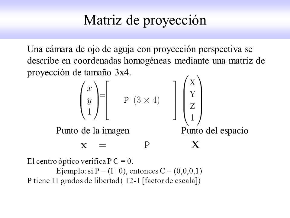 Matriz de proyección Una cámara de ojo de aguja con proyección perspectiva se describe en coordenadas homogéneas mediante una matriz de proyección de