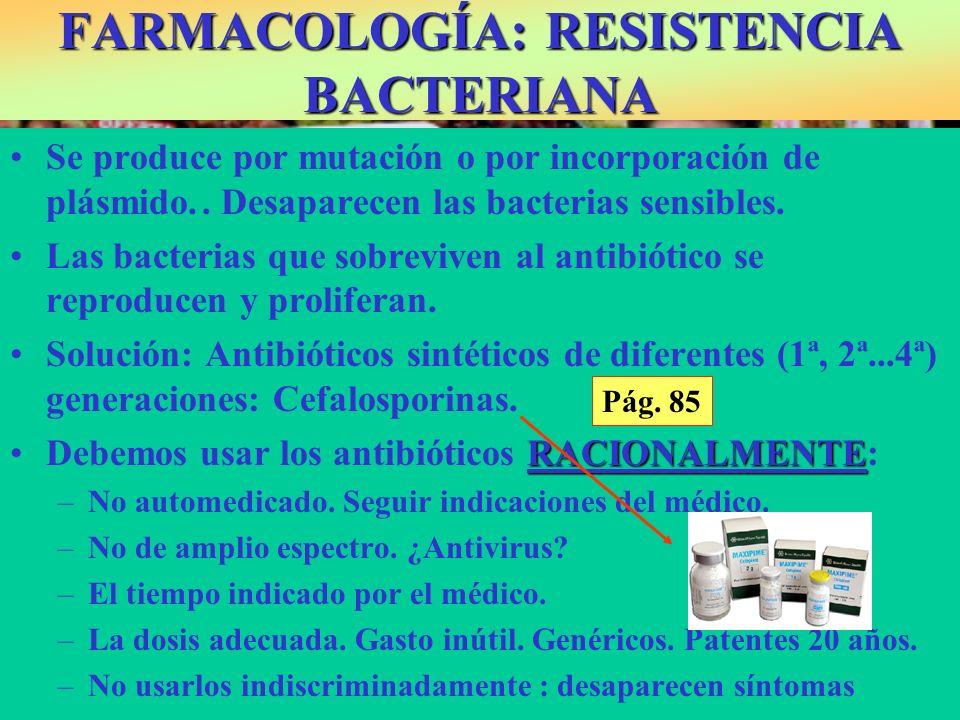 FARMACOLOGÍA: RESISTENCIA BACTERIANA Se produce por mutación o por incorporación de plásmido.. Desaparecen las bacterias sensibles. Las bacterias que