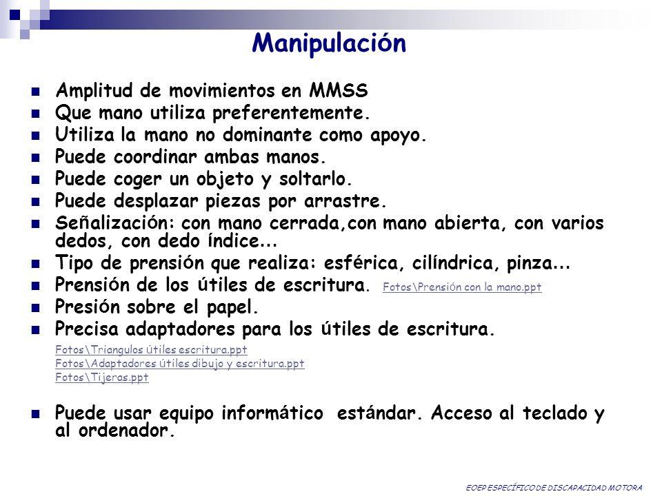 Manipulaci ó n Amplitud de movimientos en MMSS Que mano utiliza preferentemente. Utiliza la mano no dominante como apoyo. Puede coordinar ambas manos.