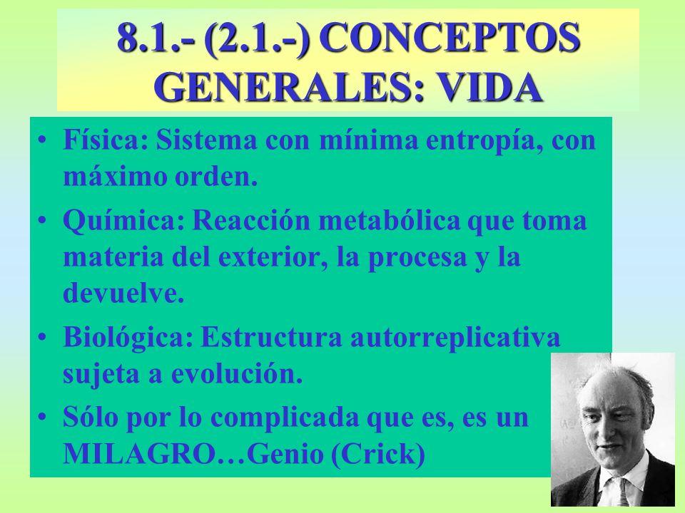 8.11.- GLÚCIDOS: NÚMERO DE CARBONOS ALDEHIDOS (ALDOSAS) CETONAS (CETOSAS) 3 C (TRIOSAS) GLICERALDEHIDODIHIDROXICE TONA 5C (PENTOSAS) RIBOSA DESOXIRRIBOSA RIBULOSA 6C (HEXOSAS) GLUCOSA GALACTOSAFRUCTOSA