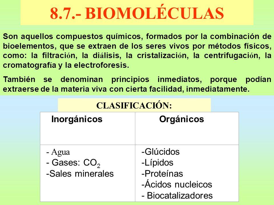 8.7.- BIOMOLÉCULAS Son aquellos compuestos químicos, formados por la combinación de bioelementos, que se extraen de los seres vivos por métodos físico