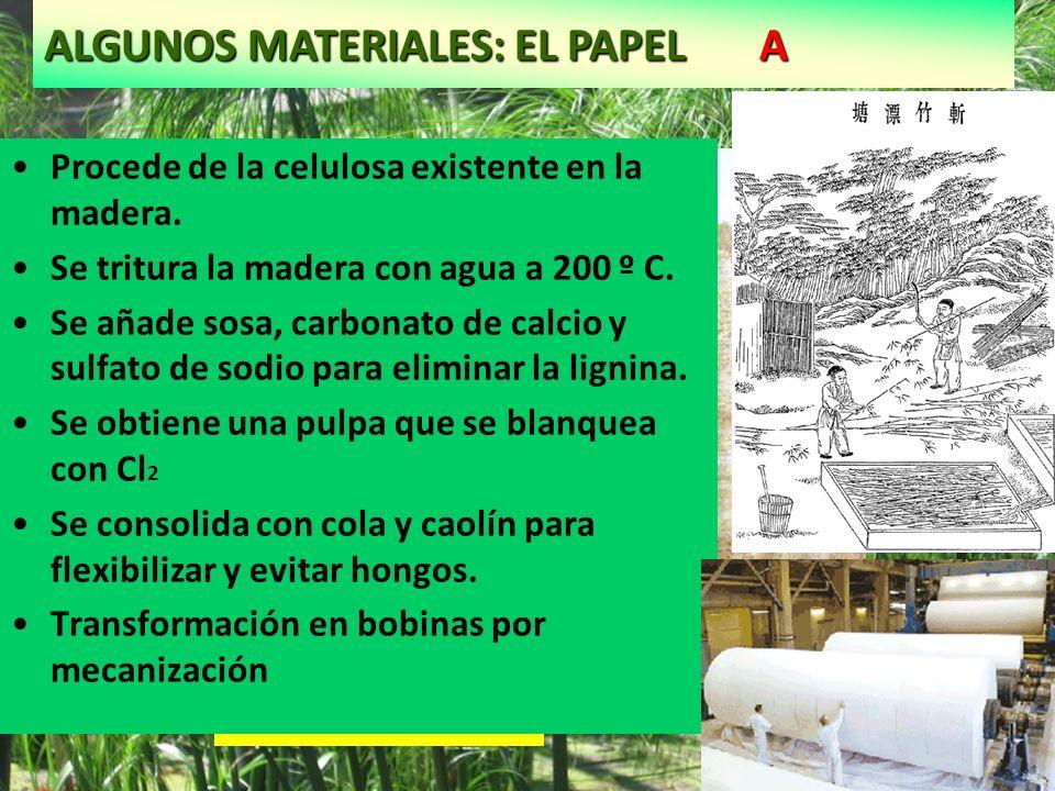 ALGUNOS MATERIALES: EL PAPEL A Cyperus papirus Papiro Procede de la celulosa existente en la madera. Se tritura la madera con agua a 200 º C. Se añade