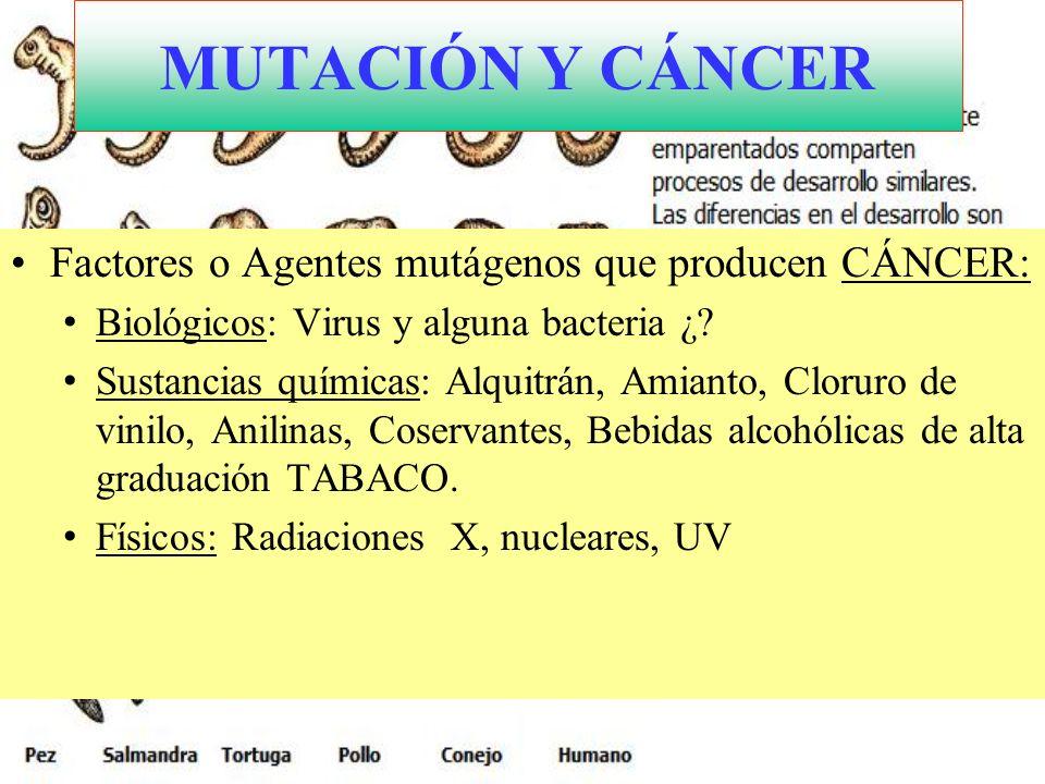 Cuello del útero con displasia alto grado MUTACIÓN Y CÁNCER VIRUS ASOCIADOS CON CANCERES HUMANOS TIPO DE VIRUSCÁNCER PAPILOMA HUMANOCUELLO DEL ÚTERO HEPATITIS BHEPATOCARCINOMA DE CÉLULAS TLEUCEMIA HERPES VIRUSSARCOMA DE KAPOSI