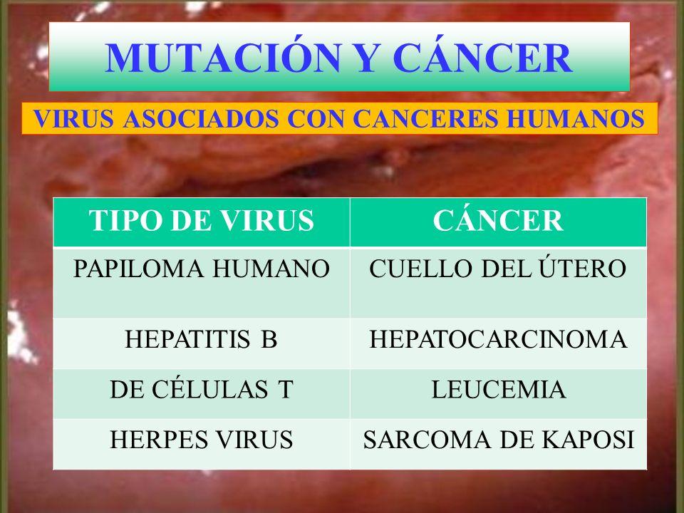 Cuello del útero con displasia alto grado MUTACIÓN Y CÁNCER VIRUS ASOCIADOS CON CANCERES HUMANOS TIPO DE VIRUSCÁNCER PAPILOMA HUMANOCUELLO DEL ÚTERO H
