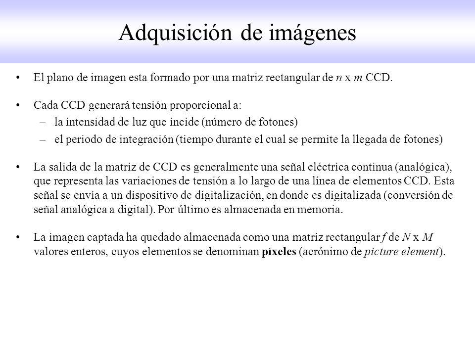 El plano de imagen esta formado por una matriz rectangular de n x m CCD.