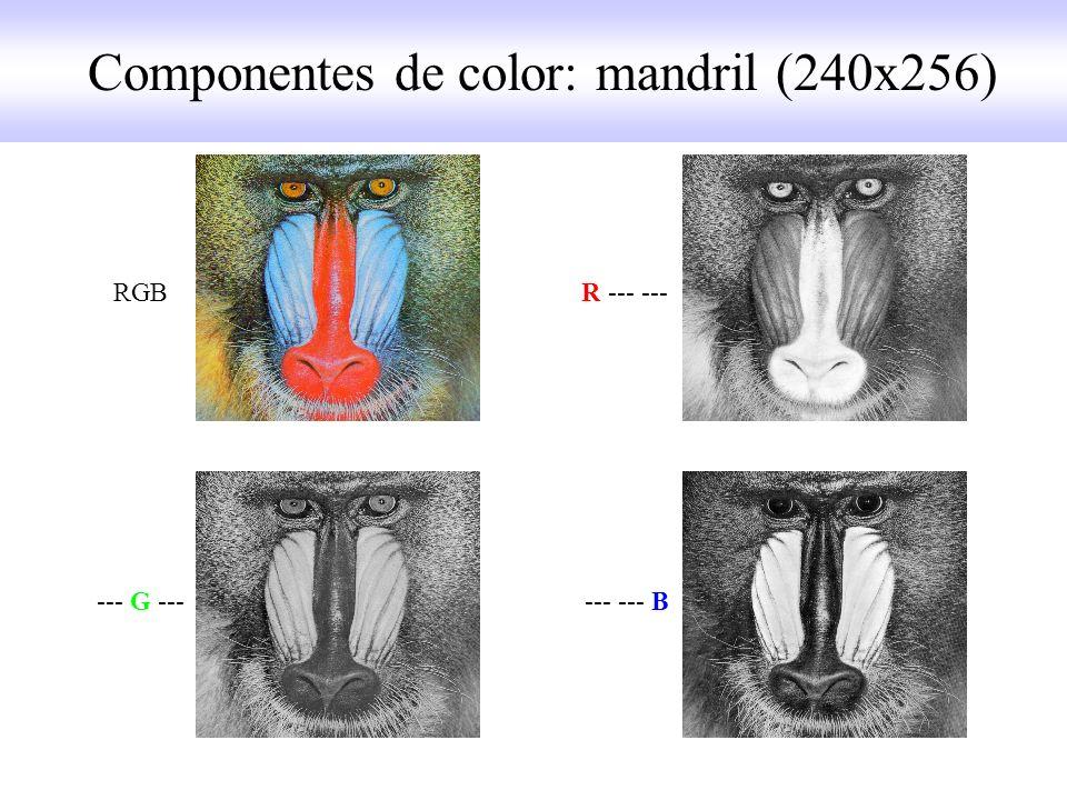 RGB R --- --- --- G --- --- --- B Componentes de color: mandril (240x256)