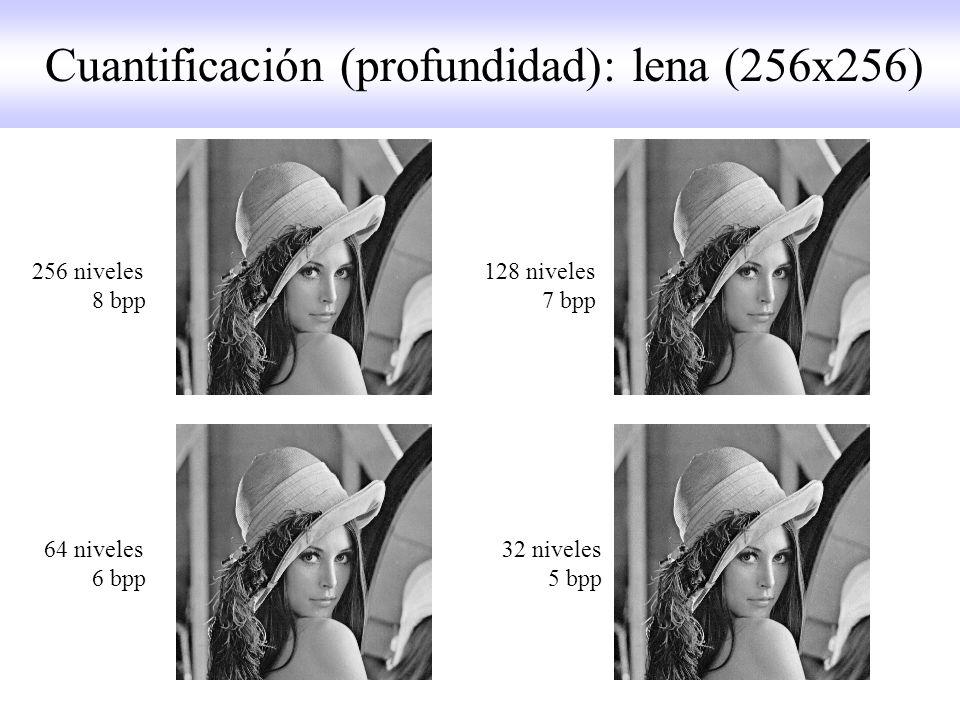 256 niveles 128 niveles 8 bpp 7 bpp 64 niveles 32 niveles 6 bpp 5 bpp Cuantificación (profundidad): lena (256x256)