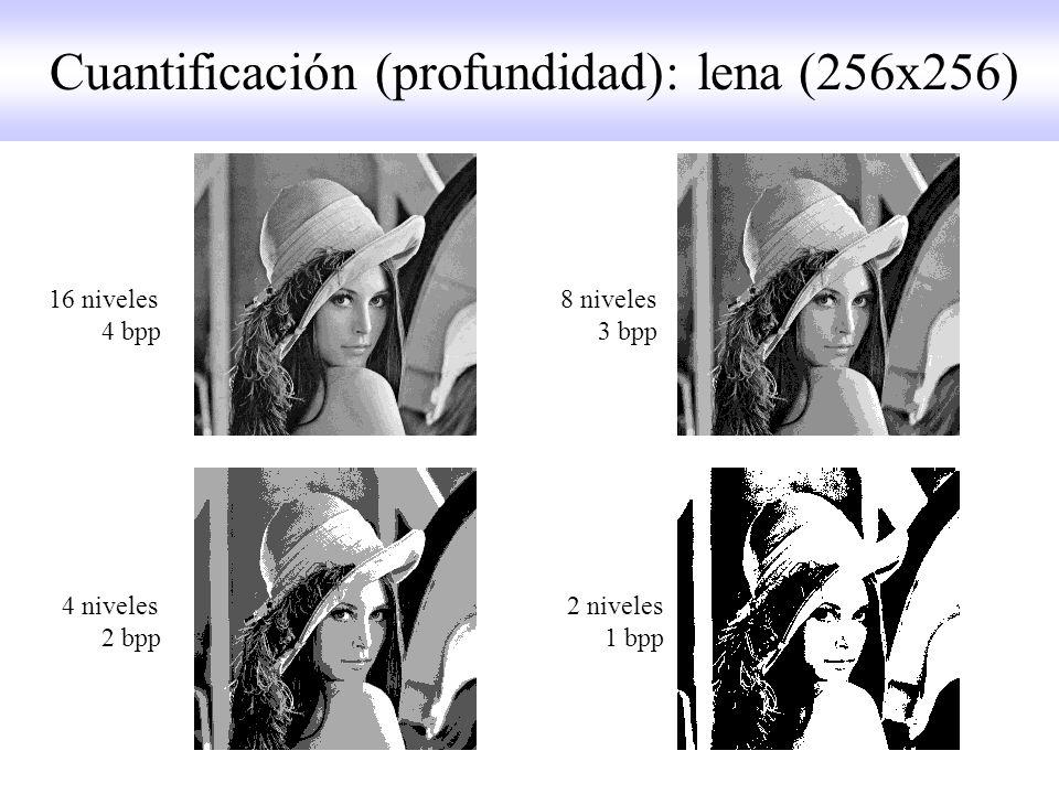 16 niveles 8 niveles 4 bpp 3 bpp 4 niveles 2 niveles 2 bpp 1 bpp Cuantificación (profundidad): lena (256x256)