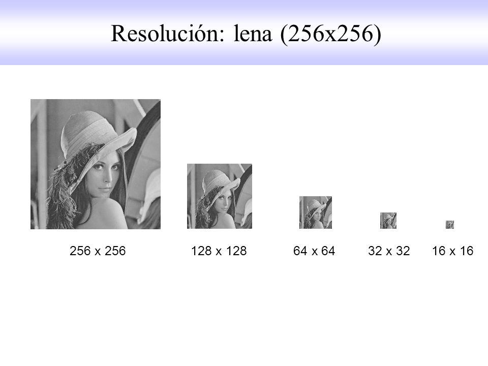256 x 256 128 x 128 64 x 64 32 x 32 16 x 16 Resolución: lena (256x256)