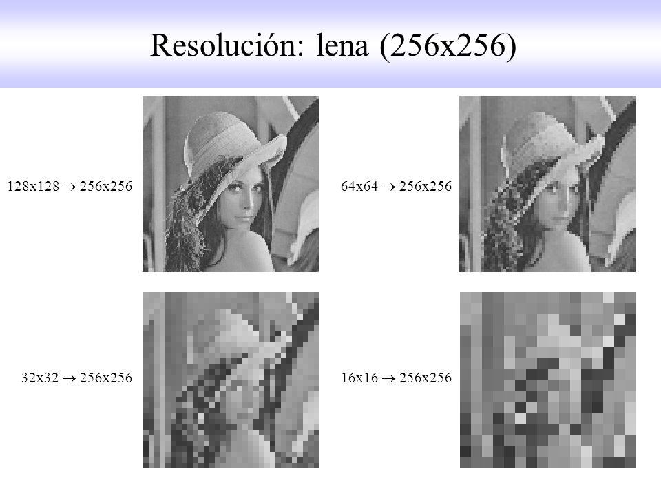 128x128 256x256 64x64 256x256 32x32 256x256 16x16 256x256 Resolución: lena (256x256)