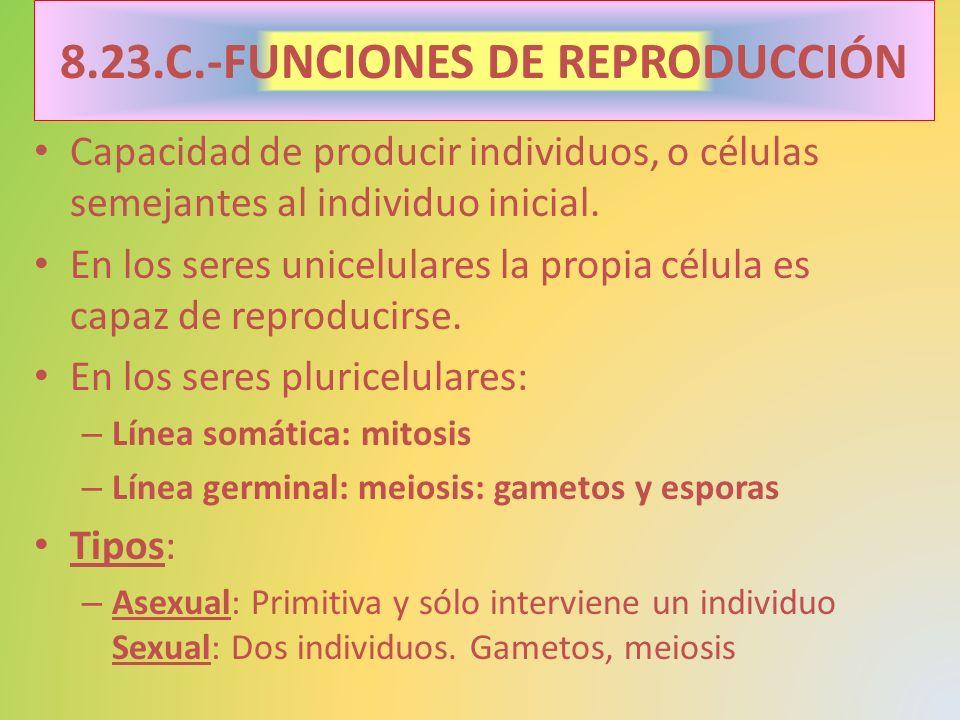 Capacidad de producir individuos, o células semejantes al individuo inicial. En los seres unicelulares la propia célula es capaz de reproducirse. En l