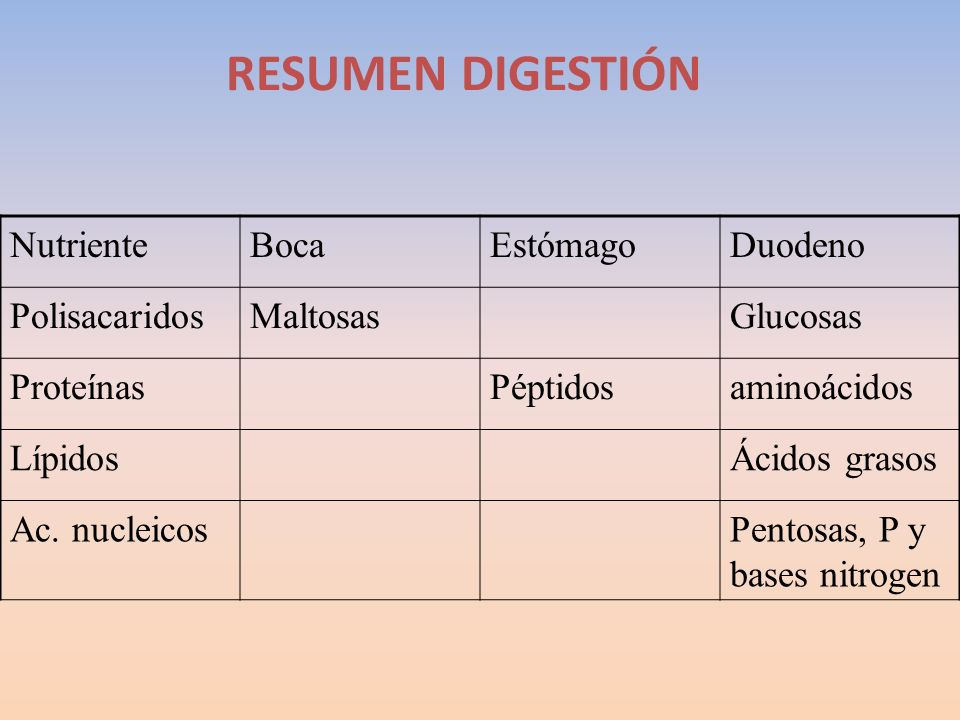 RESUMEN DIGESTIÓN NutrienteBocaEstómagoDuodeno PolisacaridosMaltosasGlucosas ProteínasPéptidosaminoácidos LípidosÁcidos grasos Ac. nucleicosPentosas,