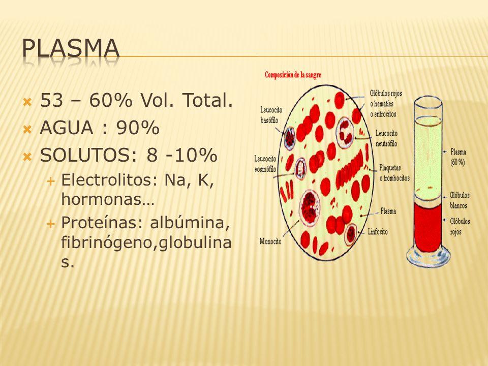 53 – 60% Vol. Total. AGUA : 90% SOLUTOS: 8 -10% Electrolitos: Na, K, hormonas… Proteínas: albúmina, fibrinógeno,globulina s.