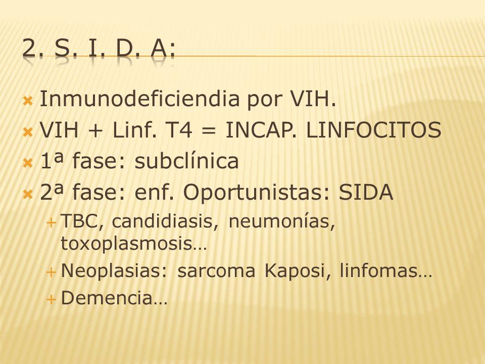 Inmunodeficiendia por VIH. VIH + Linf. T4 = INCAP. LINFOCITOS 1ª fase: subclínica 2ª fase: enf. Oportunistas: SIDA TBC, candidiasis, neumonías, toxopl