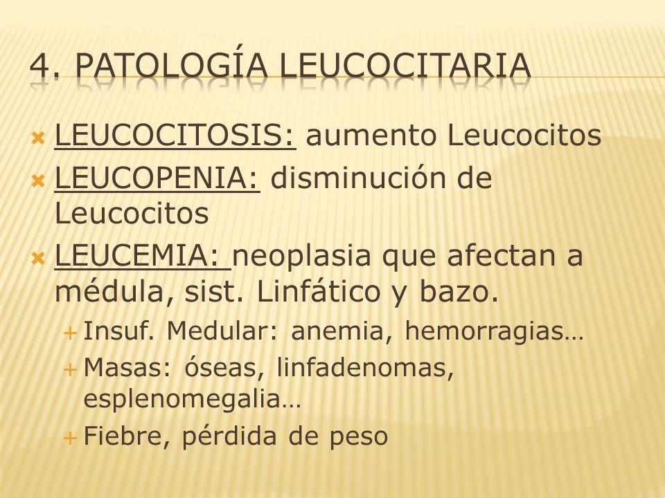 LEUCOCITOSIS: aumento Leucocitos LEUCOPENIA: disminución de Leucocitos LEUCEMIA: neoplasia que afectan a médula, sist. Linfático y bazo. Insuf. Medula