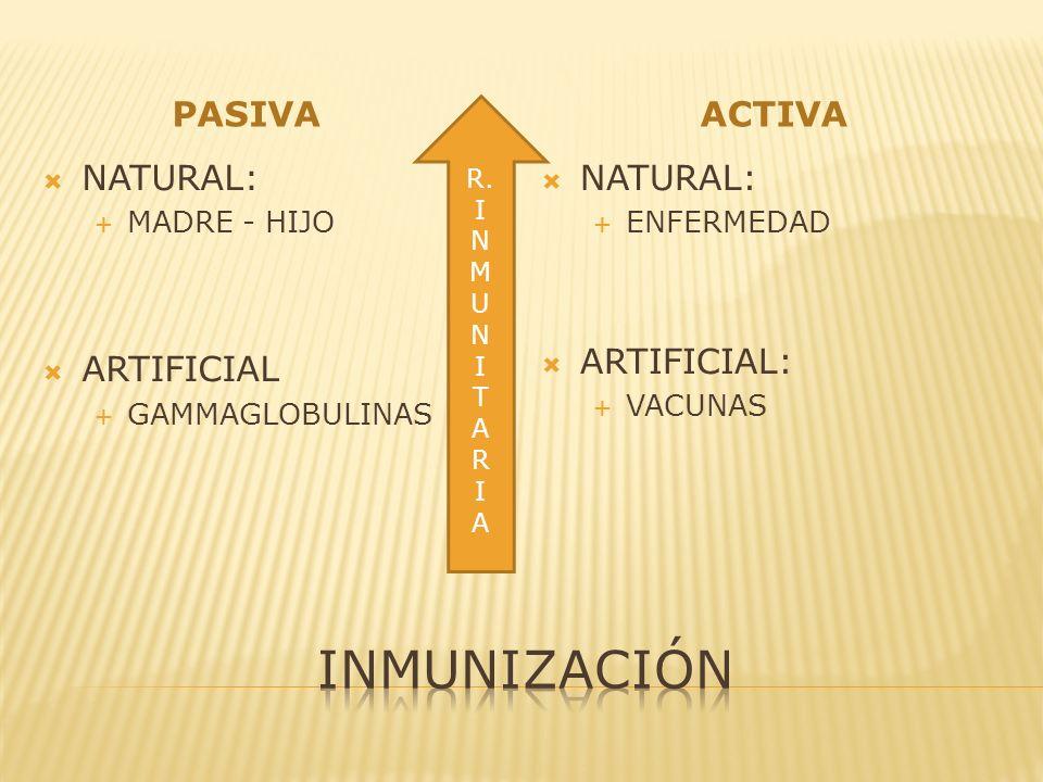 PASIVAACTIVA NATURAL: MADRE - HIJO ARTIFICIAL GAMMAGLOBULINAS NATURAL: ENFERMEDAD ARTIFICIAL: VACUNAS R. I N M U N I T A R I A