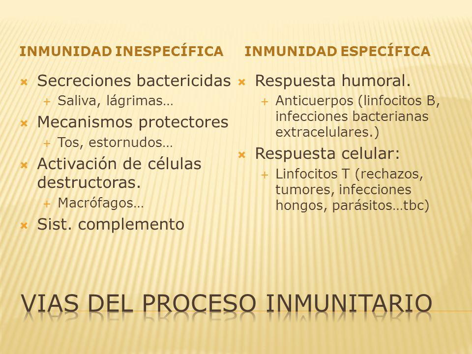 INMUNIDAD INESPECÍFICAINMUNIDAD ESPECÍFICA Secreciones bactericidas Saliva, lágrimas… Mecanismos protectores Tos, estornudos… Activación de células de