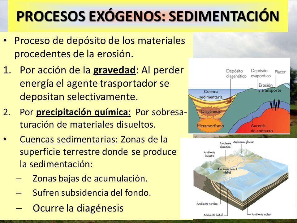 Sedimentación provocada por deforestación PROCESOS EXÓGENOS: SEDIMENTACIÓN Proceso de depósito de los materiales procedentes de la erosión. 1.Por acci