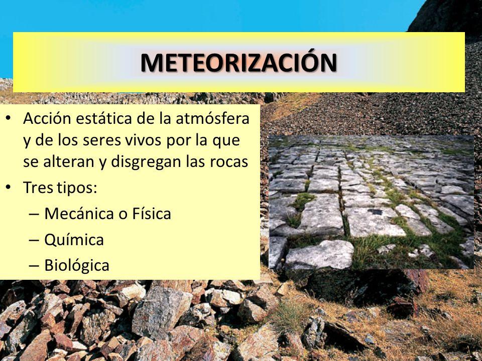 METEORIZACIÓN Acción estática de la atmósfera y de los seres vivos por la que se alteran y disgregan las rocas Tres tipos: – Mecánica o Física – Quími