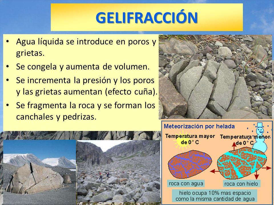 GELIFRACCIÓN Agua líquida se introduce en poros y grietas. Se congela y aumenta de volumen. Se incrementa la presión y los poros y las grietas aumenta