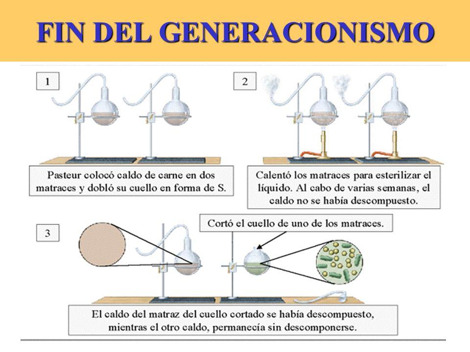 FIN DEL GENERACIONISMO