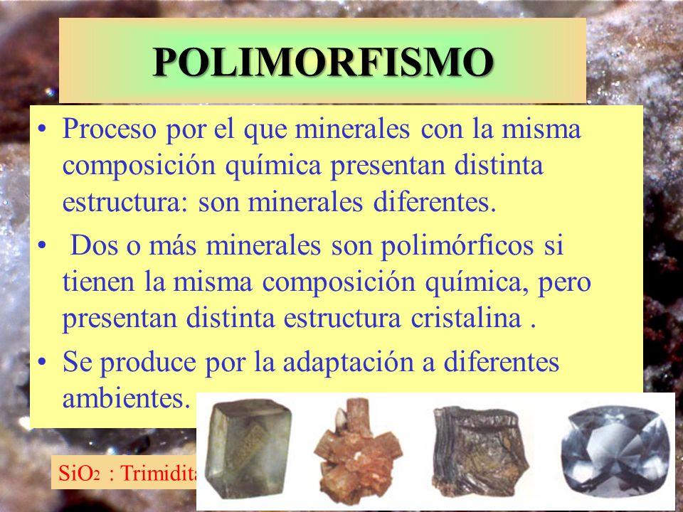 SiO 2 : Trimidita, cúbico y Cuarzo, trigonal POLIMORFISMO Proceso por el que minerales con la misma composición química presentan distinta estructura: