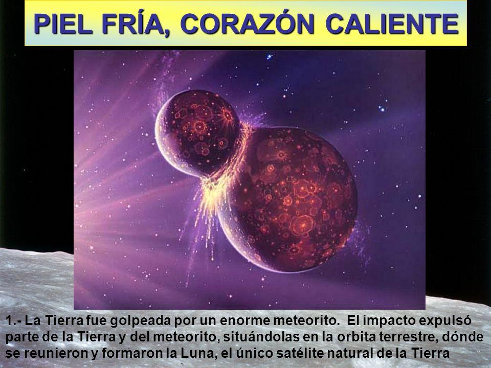 PIEL FRÍA, CORAZÓN CALIENTE 1.- La Tierra fue golpeada por un enorme meteorito. El impacto expulsó parte de la Tierra y del meteorito, situándolas en