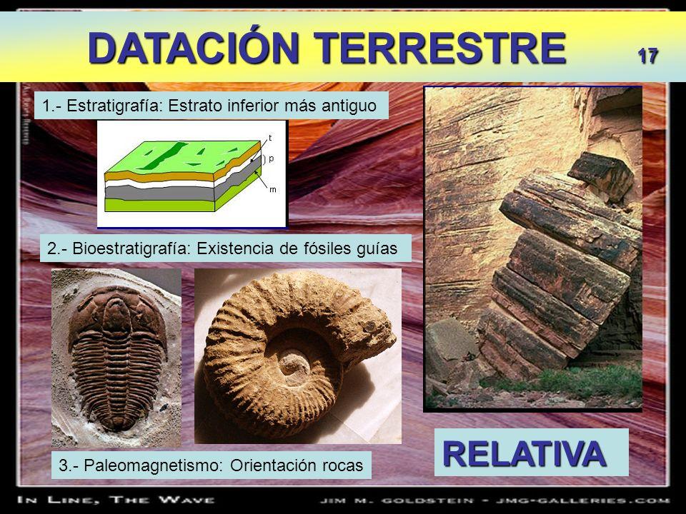DATACIÓN TERRESTRE 17 DATACIÓN TERRESTRE 17 1.- Estratigrafía: Estrato inferior más antiguo 2.- Bioestratigrafía: Existencia de fósiles guías RELATIVA