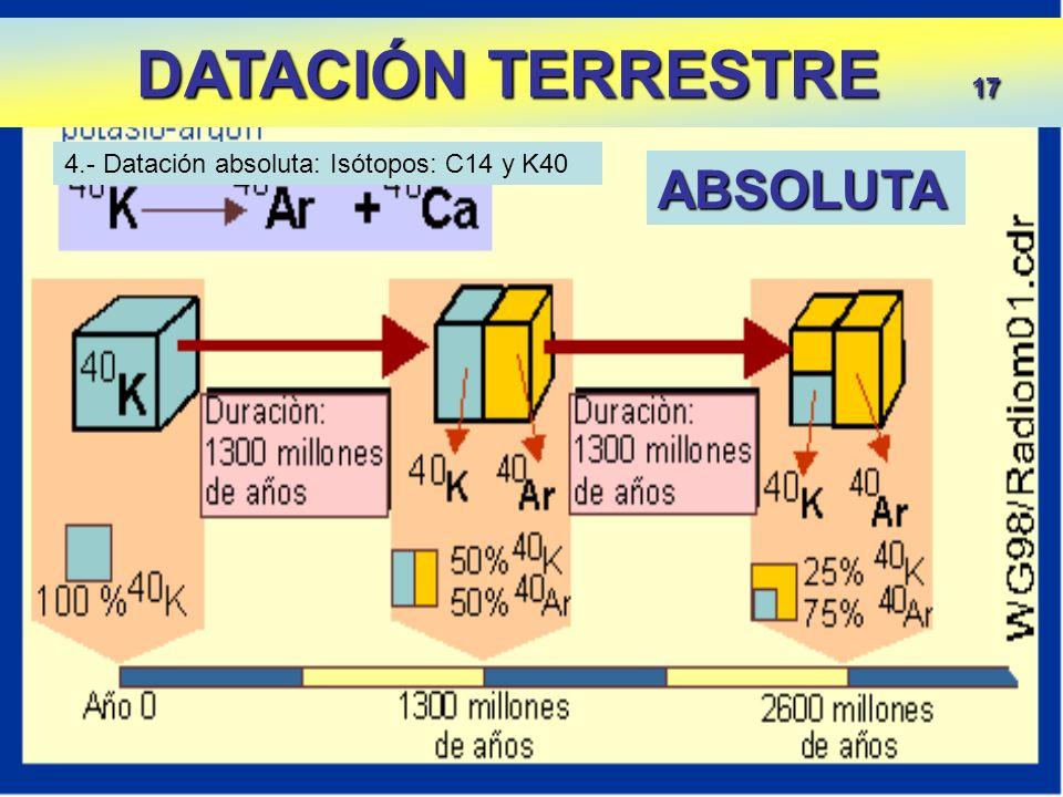 DATACIÓN TERRESTRE 17 DATACIÓN TERRESTRE 17 4.- Datación absoluta: Isótopos: C14 y K40 ABSOLUTA